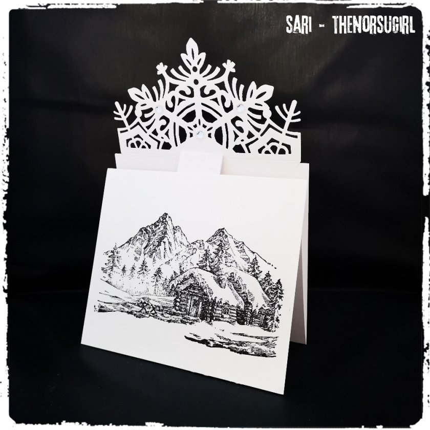 Sizzix Card Wrap, Snowflake에 대한 이미지 검색결과